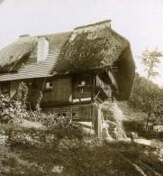 Allemagne Foret Noire Triberg Maison Ferme Bauernhaus Ancienne Photo Stereo Berberich 1900 - Stereoscopic