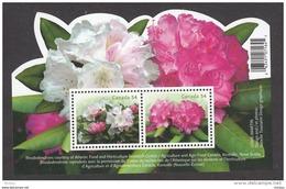 Canada, 2009, Rhododendron, Fleur, Flower,