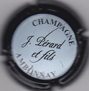 PERARD N°28 - Champagne