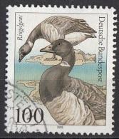 1651 Germania 1991 Uccelli Birds Anatre Oche Branta Bernicla Viaggiato Used Germany