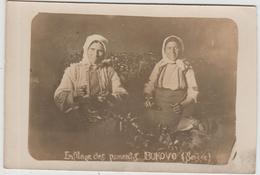 BUKOVO (SERBIE) - CARTE PHOTO - ENFILAGE DES PIMENTS - Serbien