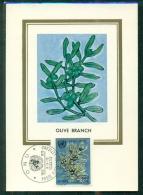 CM-Carte Maximum Card # 1970 -Vatican  # UNO #  Olive Branch   -l´olivo, Simbolo Della Pace - Maximum Cards