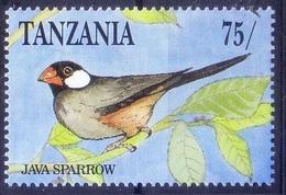 Java Sparrow, Java Rice Sparrow Popular Cage Birds, Tanzania MNH