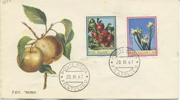 ITALIA - FDC ROMA 1967 -  FIORI - F.D.C.