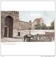 CDBTP5546CPA-LFT6540TABU.Tarjeta Postal DE CORDOBA.animales,carro.PUERTA DE ALMODOVAR En .Cordoba - Burros