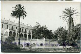 - HAMMAM - Righa - ( Algérie ), Grand Hôtel Et Sites, Palmiers, Coins Ok, Non écrite TBE, Scans - Algerije