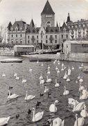 C.P.S.M. Suisse - Lausanne - Le Château D'Ouchy, Barques Et Cygnes En 1957 - VD Vaud