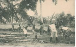 POSTAL DE GUINEA ESPAÑOLA DE INDIGENAS APISONANDO EL CAMINO RECIEN TRAZADO (EXPO IBERO-AMERICANA SEVILLA 1929) - Guinea Ecuatorial