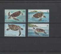 Schildpad ** - Schildpadden