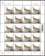 ESTONIA 2017 Turtledove Dove Pigeon Bird Columbidae Paloma Piccione Sheet (20v) MNH - Tauben & Flughühner