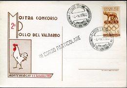 18380 Italia, Special Card And Postmark 1960 Montevarchi, Mostra Pollo Valdarno, Chicken Exhibition - Farm