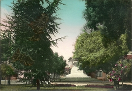 Fiorenzuola D'Arda (Piacenza, Emilia Romagna) Giardini Pubblici E Monumento Ai Caduti - Piacenza