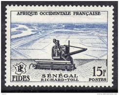 A. O. F. N° 58  XX Série FIDES :  Richard Tollau Sénégal TB