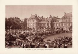 PARIS, LE PALAIS ET LES JARDINS DU LUXEMBOURG, Animée, Planche Densité = 200g, Format 20 X 29 Cm, () - Géographie