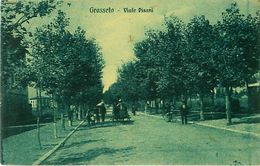 Cpa GROSSETO - Viale Pisani - Grosseto
