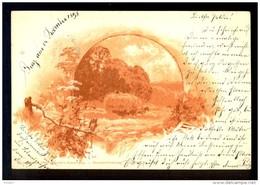 Nurnberg Theo Stroefer's Kunstverlag-Monotint Postkarte. Serie III / Year 1898 / Postcard Circulated - Künstlerkarten