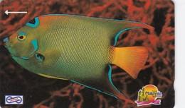 Malaysia, 19MSAA, Blue Fish, 2 Scans. - Malasia