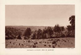 MANCHE, PAYSAGE A JUVIGNY, PRES DE MORTAIN, Planche Densité = 200g, Format 20 X 29 Cm, (A. Briquet) - Géographie