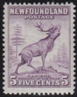 Newfoundland      .    SG    .      213       .        *     .       Ongebruikt  .   /   .    Mint-hinged  VVLH - 1908-1947