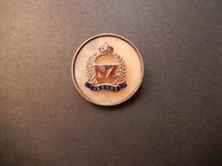 Pin Nuova Zelanda - P383 - Pin's