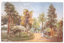 MADEIRA - JARDIM PUBLICO   ( R.M.S.P. AND P.S.N.C. PSTCAR SERIE N.3) - Madeira