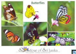 Sri Lanka Postcards, Butterflies, Postcard - Sri Lanka (Ceylon)