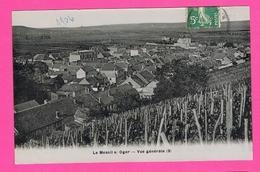 D51. LE MESNIL-SUR-OGER. VUE GENERALE - France