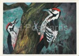 Great Spotted Woodpecker - Dendrocopos Major - Birds Of Russian Forest - 1979 - Russia USSR - Unused - Oiseaux