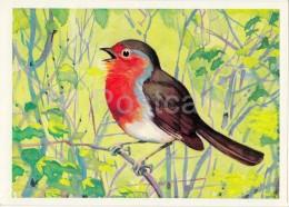 European Robin - Erithacus Rubecula - Birds Of Russian Forest - 1979 - Russia USSR - Unused - Oiseaux