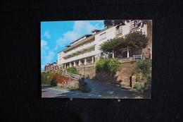 AP4 - 96 - Belgique - La Roche En Ardenne - Hôtel Des Bruyères - Pas Circulé
