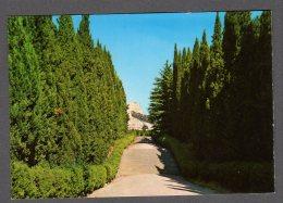 CASTELFIDARDO MONUMENTO NAZIONALE DELLE MARCHE (VITO PARDO) FG NV  SEE 2 SCANS - Altre Città