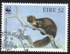 Ireland Pine Martin Used Stamp - Stamps