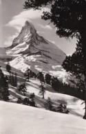 Switzerland Zermatt Matterhorn Von Riffealp 1952 Photo - VS Valais