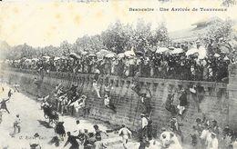 Beaucaire - Une Arrivée De Teaureaux (course De Taureaux) - Edition C. Rieter - Carte Non Circulée - Corrida