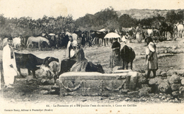 Palestine -  Lot De 4 Cartes - Cana , Galilée,Bethleem, Ramleh, Jérusalem - Palestine