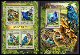 SIERRA LEONE 2016 - Indigo Birds, M/S + S/S. Official Issue. - Passereaux