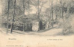 BRUXELLES / BRUSSEL / LE BOIS DE LA CAMBRE / LE PONT RUSTIQUE - Forests, Parks