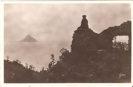 Mont Saint-Michel - Le Mont Vu De Tombelaine - Carte Photo - Vierge - Le Mont Saint Michel