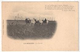 28 - LA BEAUCE - La Charrue - Edition Portéhaut, Pithiviers - Attelage De Boeufs - France