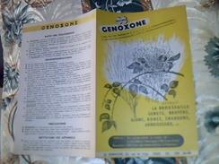 Vieux Papier Publicité Agriculture  Debroussaillant GENOXONE QUINO  Tue La Broussaille  Usine LA QUINOLEINE - Publicidad