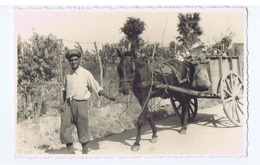 ALBANIA - ITALIAN OCCUPATION - MAN WITH CART & HORSE - RPPC POSTCARD 1940s (BG3280) - Unclassified