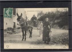 Paysannes Auvergnates - TBE - Auvergne Types D'Auvergne