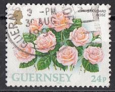 489 Guernsey  1992 Fiore Flowers Standard Rose Rosa Comune  Viaggiato Used