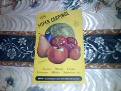 Publicité  Agriculture SUPER CARPINOL  Quino Traitement Verger Potager Usine La QUINOLEINE - Publicidad