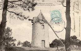 SAINT JEAN DE MONTS Vieux Moulin Au Milieu Des Pins - Saint Jean De Monts