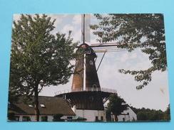 EMMA Molen Nieuwkuyk ( Sikkers Drunen ) Anno 19?? ( Zie Foto Details ) !! - Pays-Bas