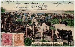 ARGENTINE - Costumbres Campestres - Remate Feria   (Recto/Verso) - Argentina