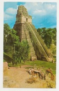 GUATEMALA - TIKAL - TEMPLE 1 - 3 POSTCARDS - B. ZADIK & CO. 1960s ( 609 ) - Guatemala