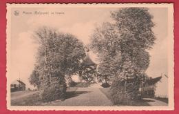 Macon - Le Calvaire ( Voir Verso ) - Momignies