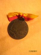 Suisse: Médaille Promotion Civique, Genève 1946 - Jetons & Médailles